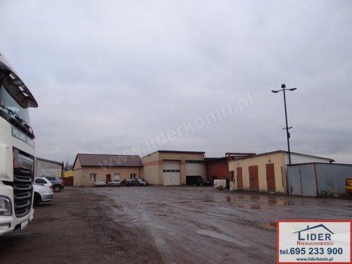 Wynajmę nieruchomość komercyjną (baza transportowa) - Konin